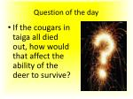 question of the day1