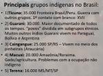 principais grupos ind genas no brasil