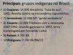 principais grupos ind genas no brasil1