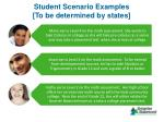 student scenario examples to be determined by states