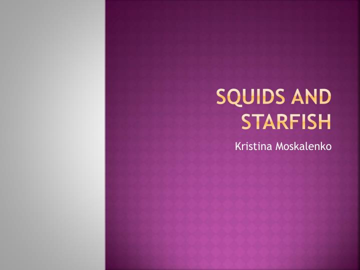 squids and starfish n.