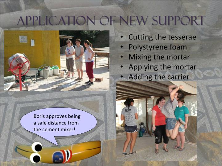 Application of New Support