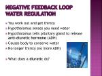 negative feedback loop water regulation