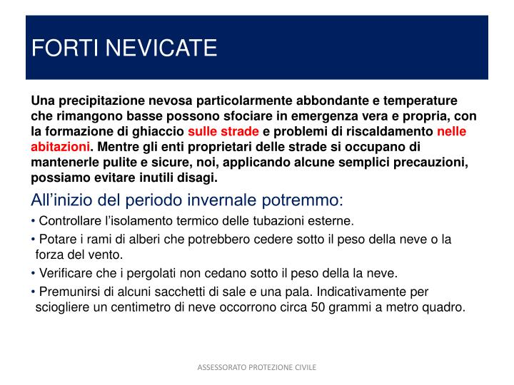 FORTI NEVICATE