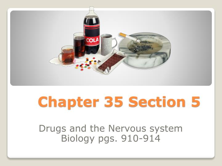 chapter 35 section 5 n.
