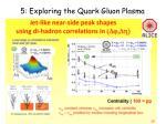 5 exploring the quark gluon plasma