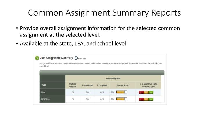 Common Assignment Summary Reports