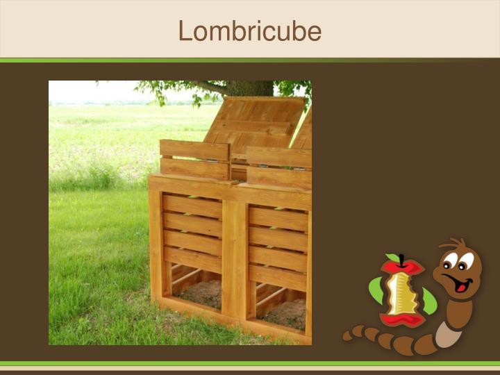 Lombricube