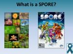 what is a spore