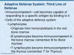 adaptive defense system third line of defense2