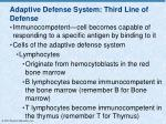 adaptive defense system third line of defense2