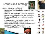 groups and ecology