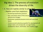 big idea 1 the process of evolution drives the diversity of life