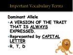 important vocabulary terms1