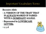 important vocabulary terms2