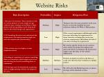 website risks