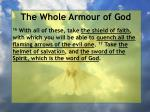 the whole armour of god42