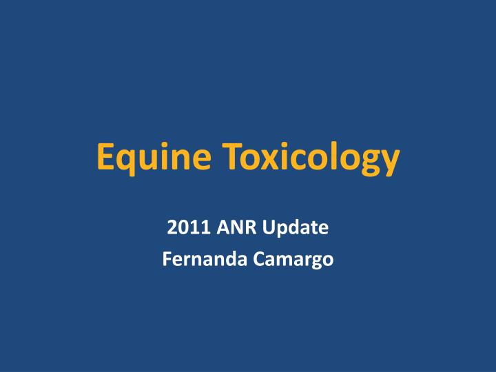 equine toxicology n.