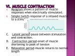 vi muscle contraction