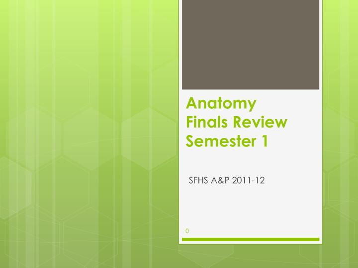 anatomy finals review semester 1 n.