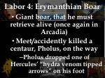 labor 4 erymanthian boar