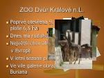 zoo dv r kr lov n l