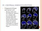 iv central nervous system