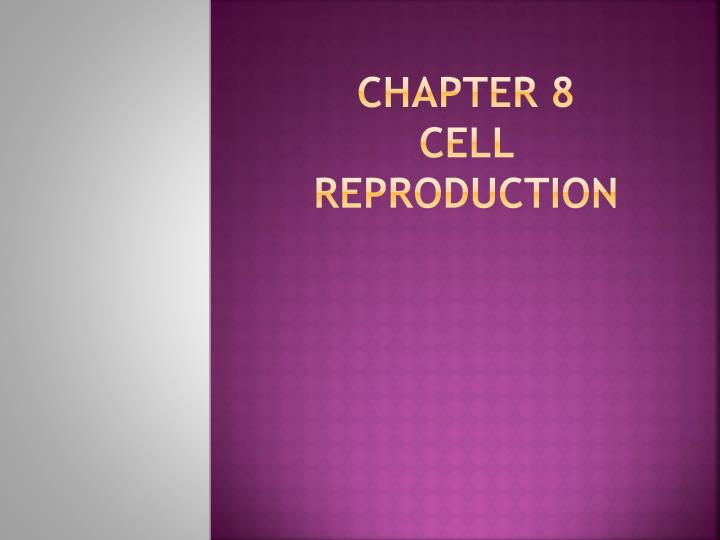 chapter 8 cell reproduction n.