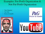 examples for profit organization not for profit organization