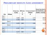 preliminary results loss assessment1