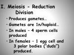 i meiosis reduction division