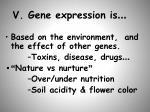 v gene expression is