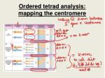 ordered tetrad analysis mapping the centromere