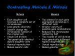 contrasting meiosis mitosis