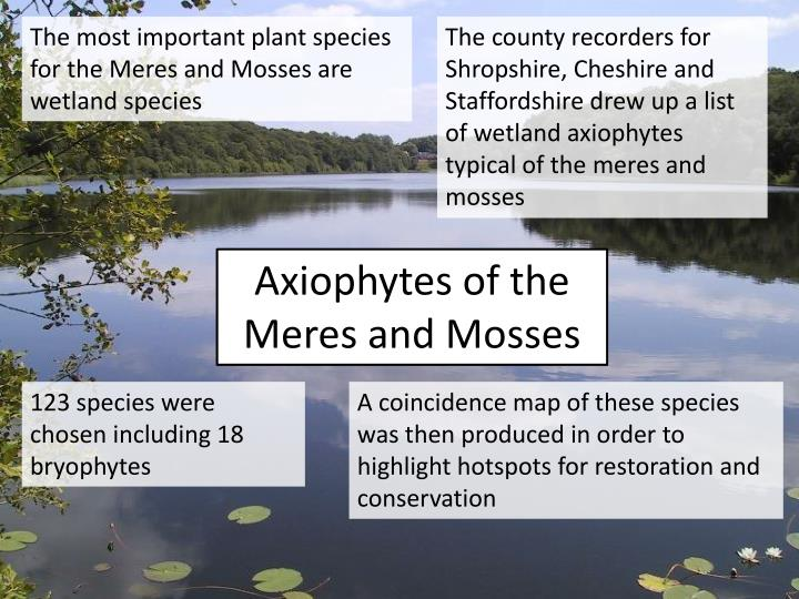 The most important plant species for the