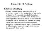 elements of culture8