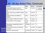 30 60 day action plan continued