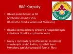 b l karpaty