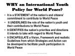 why an international youth policy for world peace