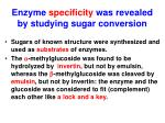 enzyme specificity was revealed by studying sugar conversion