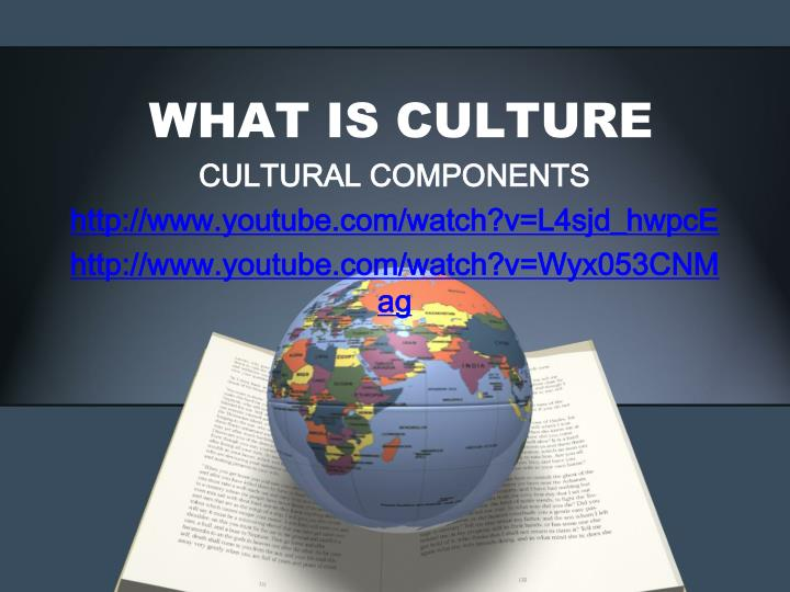 what is culture n.