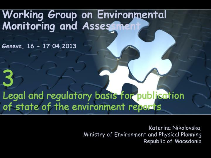 working group on environmental monitoring and assessment geneva 16 17 04 2013 n.
