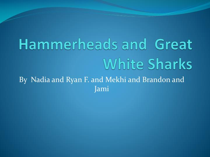 hammerheads and great white sharks n.