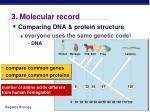 3 molecular record