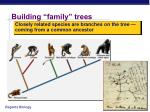 building family trees