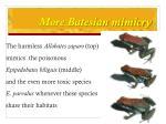 more batesian mimicry1