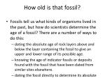 how old is that fossil