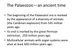 the palaeozoic an ancient time