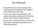the palaeozoic2