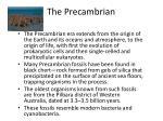 the precambrian